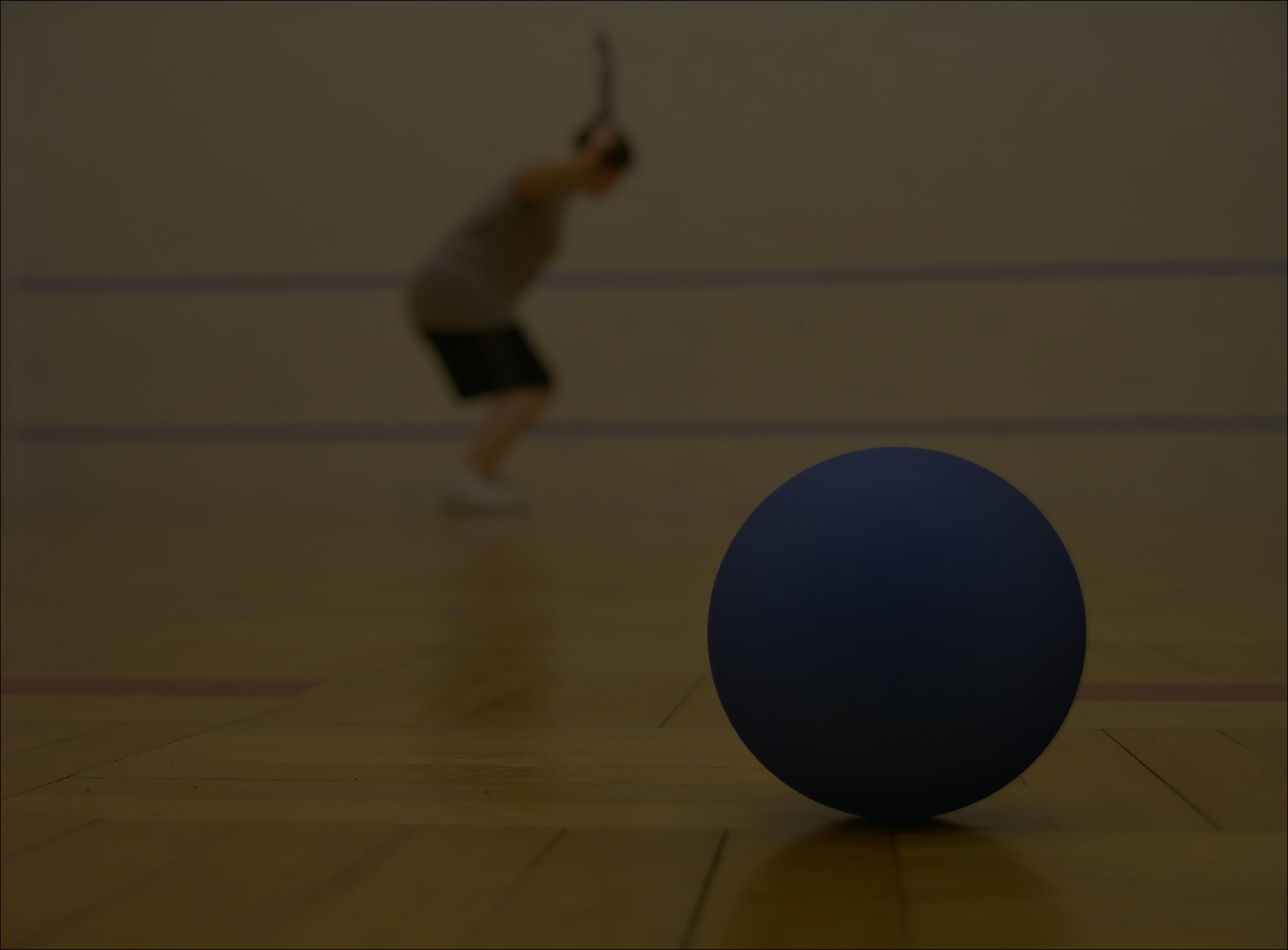 portland racquetball
