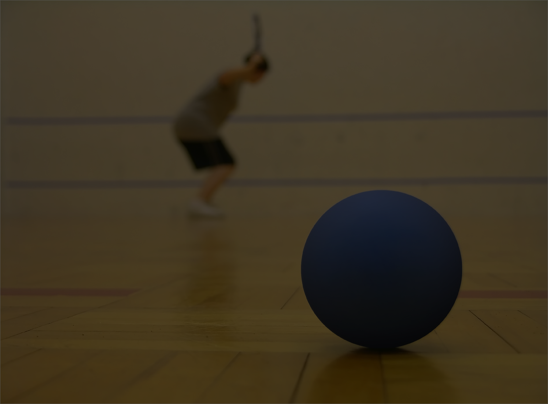 Racquetball cascade athletic clubs for Average cost racquetball court
